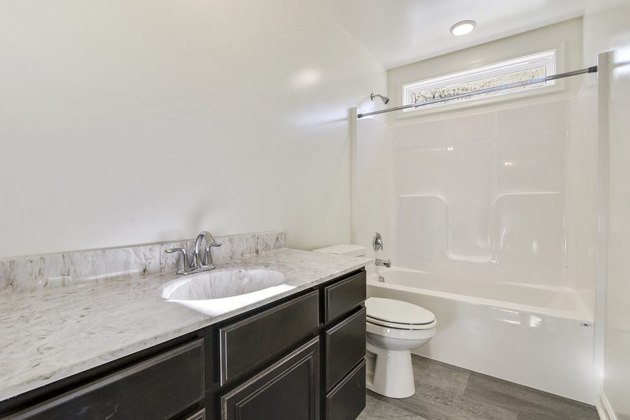 Custom - Hall bathroom